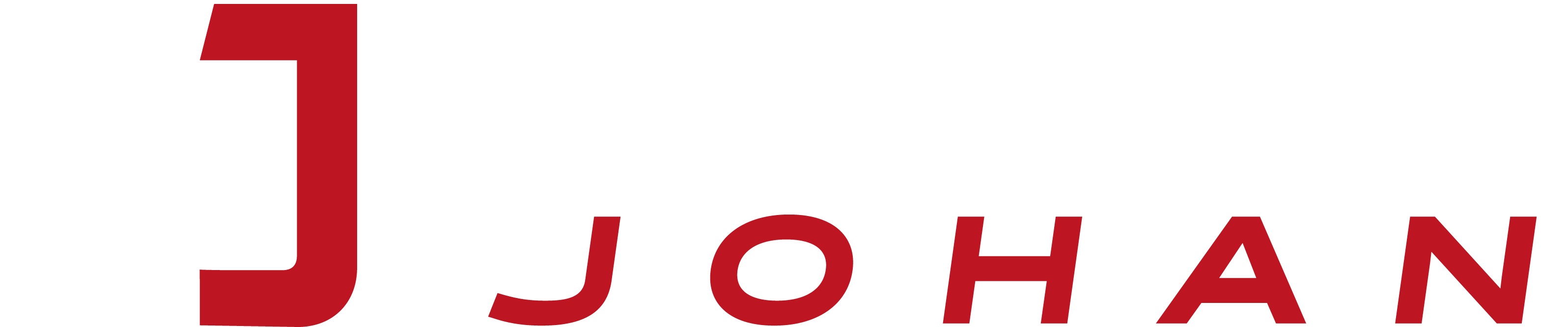 AUTOJOHAN logo světlé